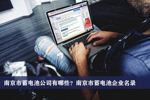 南京市蓄电池公司有哪些?南京蓄电池企业名录