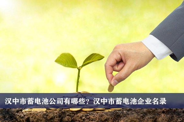 汉中市蓄电池公司有哪些?汉中蓄电池企业名录